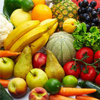 1528 Logo Fruits